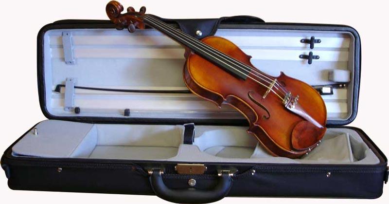 Cadoni 200 violin outfit