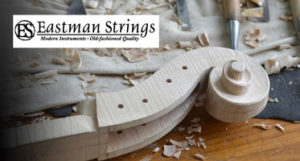 Eastman Strings Violin scroll