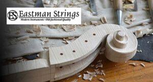 Eastman Strings Violin scroll