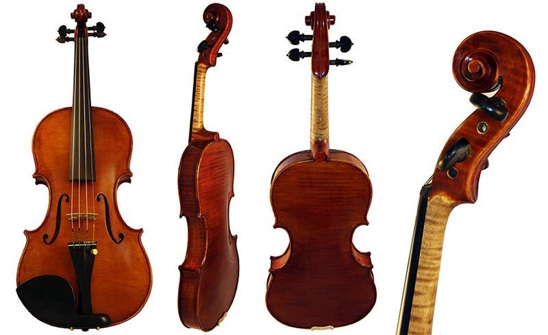 Federico Fiora Violin 2015