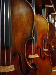 Violin Outlet welcome picture of violins
