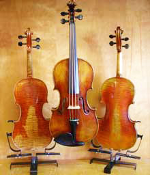 Picture of violins on display