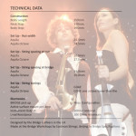 Bridge Aquilla Electric Violin Technical Specs