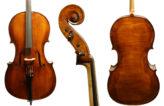 Michael Gerlach Cello