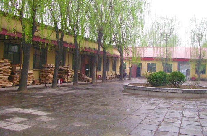 Eastman Strings Workshop in China