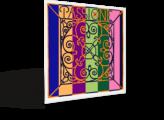 vln_passione_persp