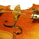 Realist Copperhead Violin Pickup