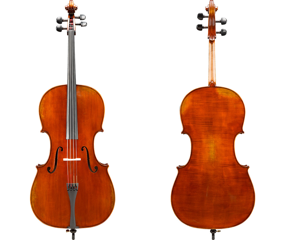 Albert Nebel Cello VC601