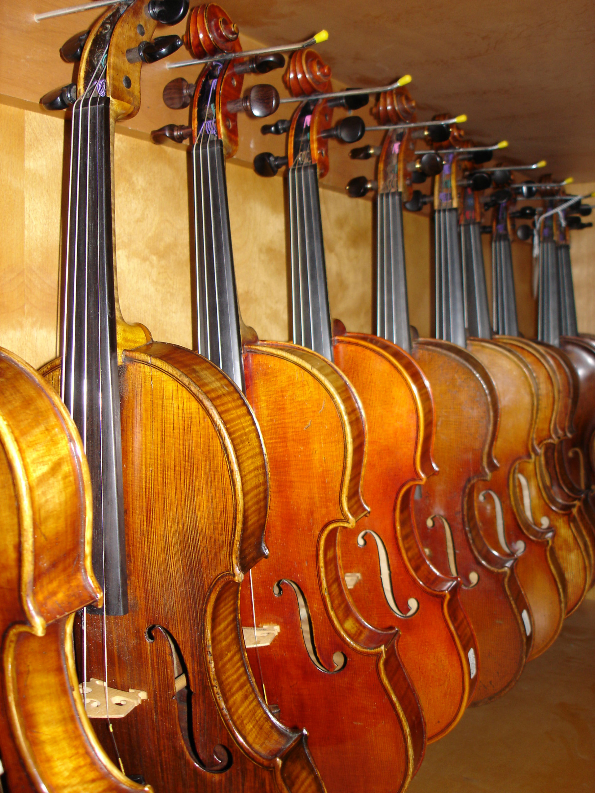 Modern and Vintage Fine Violins on Display from Private Collectors