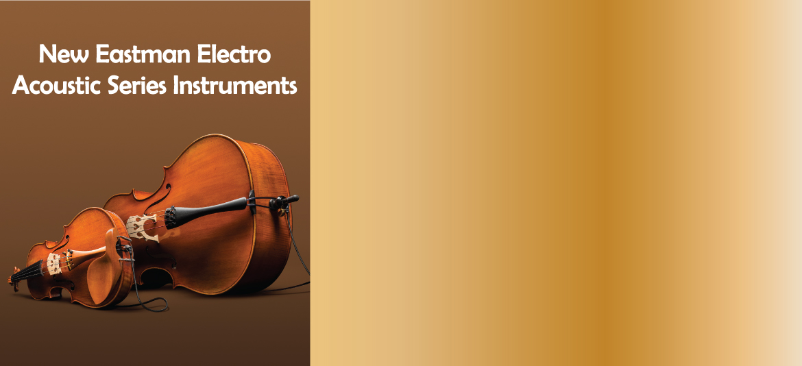 New Eastman Electro Acoustic Instruments