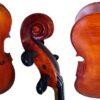 Martin Beck Cello
